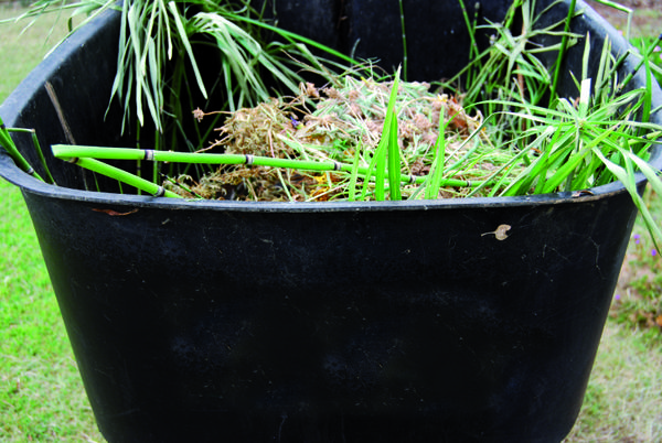 Si vous disposez d'un composteur, vous pouvez composter tout déchet  alimentaire, les coquilles d'oeuf, le marc de café, un peu de carton.  N'hésitez pas à brasser de temps à autre ces déchets qui finiront dans  votre jardin.