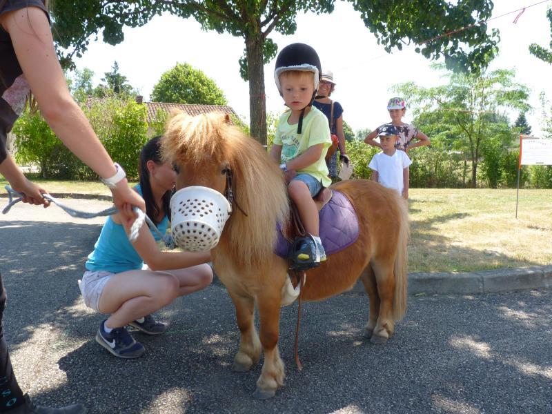 ballade à poneys
